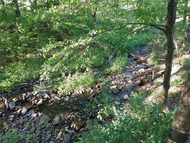 Yard featured at 511 County Road 9, Chenango Forks, NY 13746