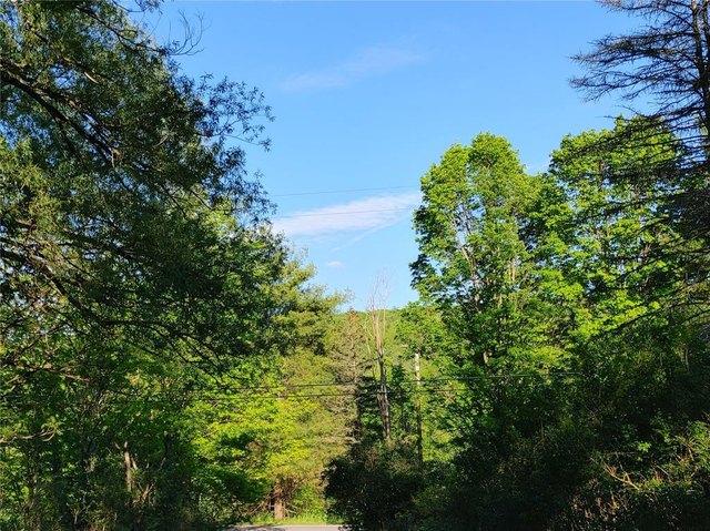 Farm land featured at 511 County Road 9, Chenango Forks, NY 13746
