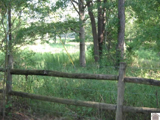 Farm land featured at 1365 Old Dover Rd, Cadiz, KY 42211