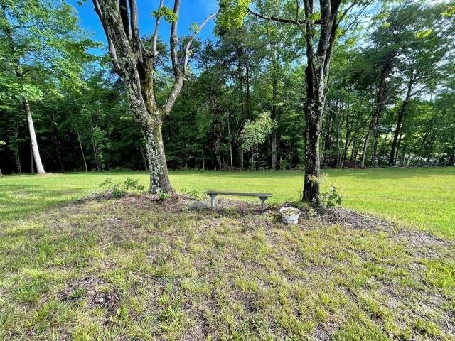 Yard featured at 1467 Museville Rd, Chatham, VA 24531