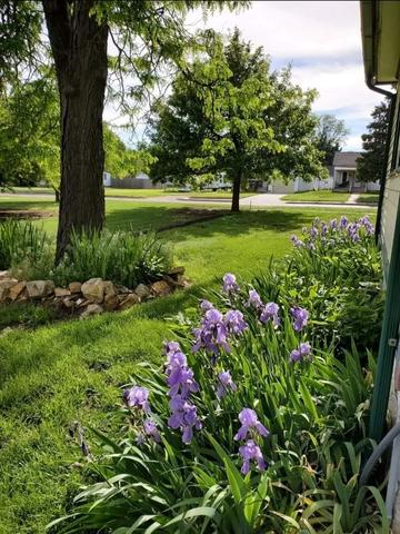 Yard featured at 211 N Rodehaver St, Oberlin, KS 67749