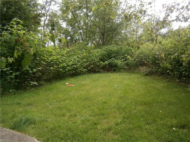 Yard featured at 126 S Pearl St, Youngstown, OH 44506