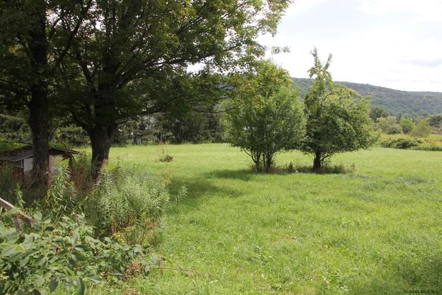 Yard featured at 2132 State Route 165, Seward, NY 12043
