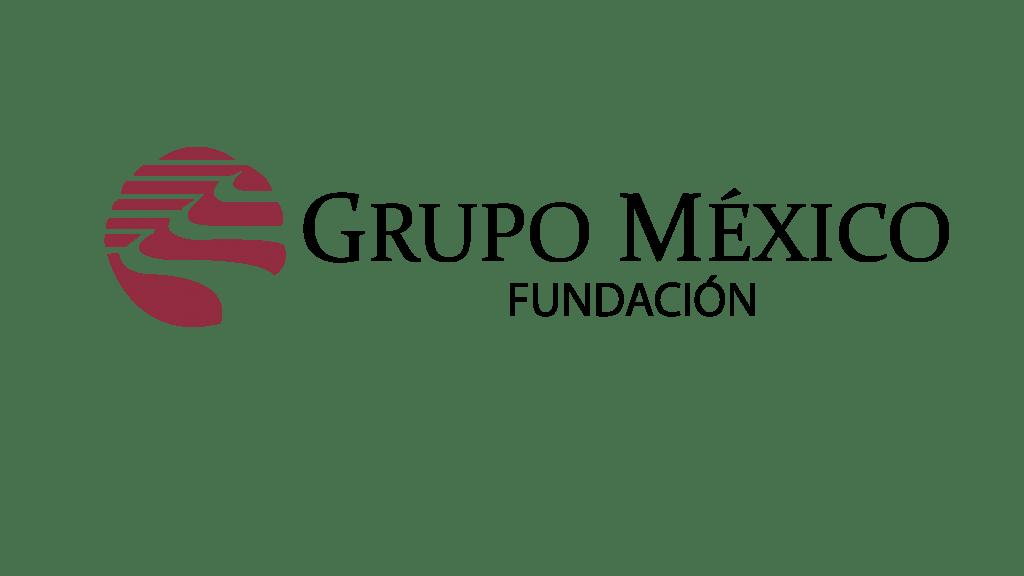 Logo Fundación Grupo México