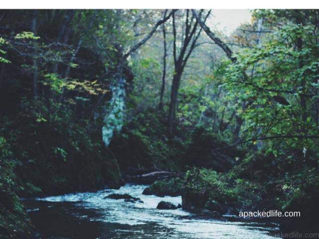 River Torridge, North Devon, England