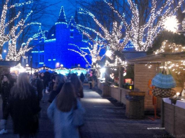 Absolutely Awesome Things To Do In Antwerp - het steen, Kerstmarkt In Antwerp, Belgium - apackedlife.com (1)