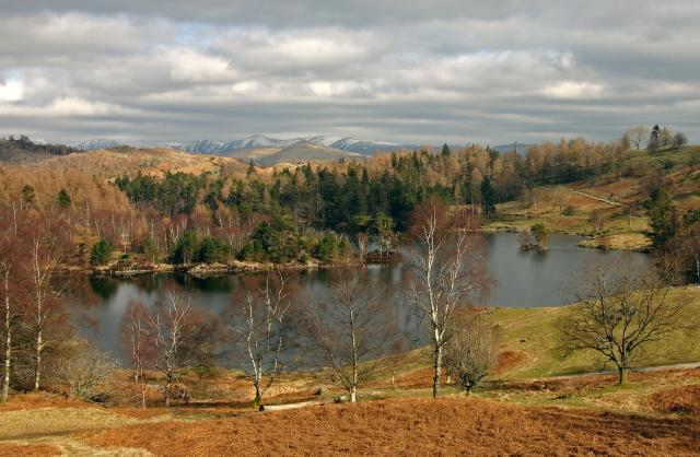 25 Stunning Places To Visit In The Lake District - Tarn Hows