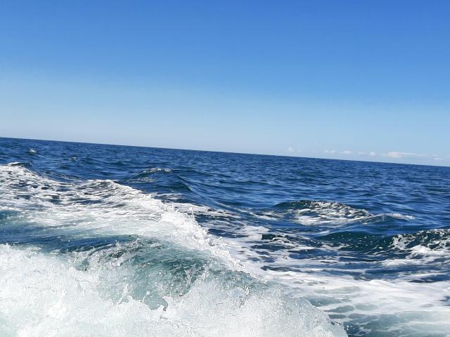 Off the New Quay Coast, Ceredigion on Ermol 5