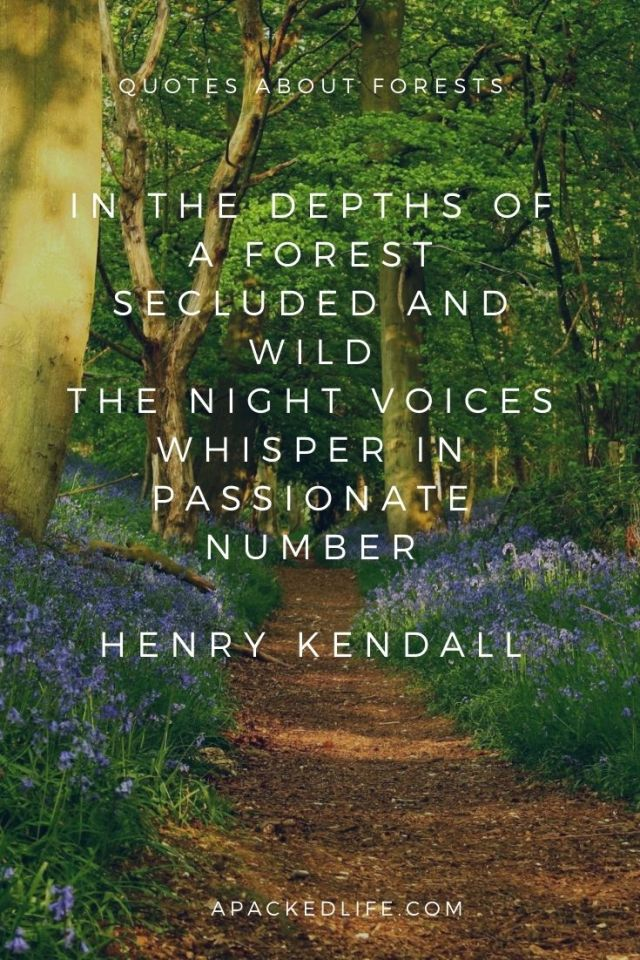 Quotes about forests - Henry Kendall