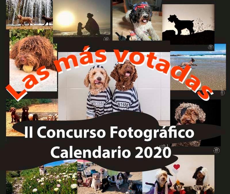 RESULTADOS VOTACIÓN – II Concurso Calendario APAGUAS
