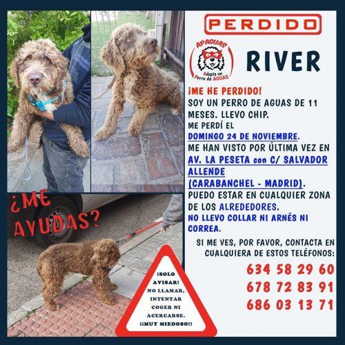 RIVER se ha perdido en MADRID!!!