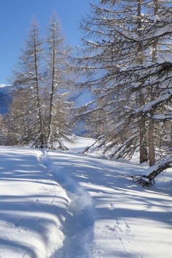 Paysages hivernal de rêve