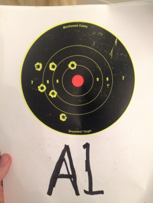 My 100 yard paper mover target shot off a saw horse.