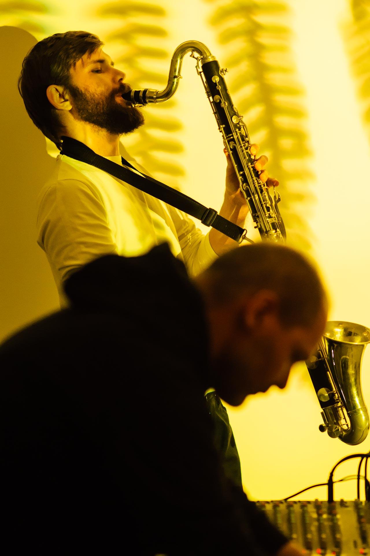 Fotografia z koncertu Flora Quartet w Gdańsku (Gdańsk Wrzeszcz)