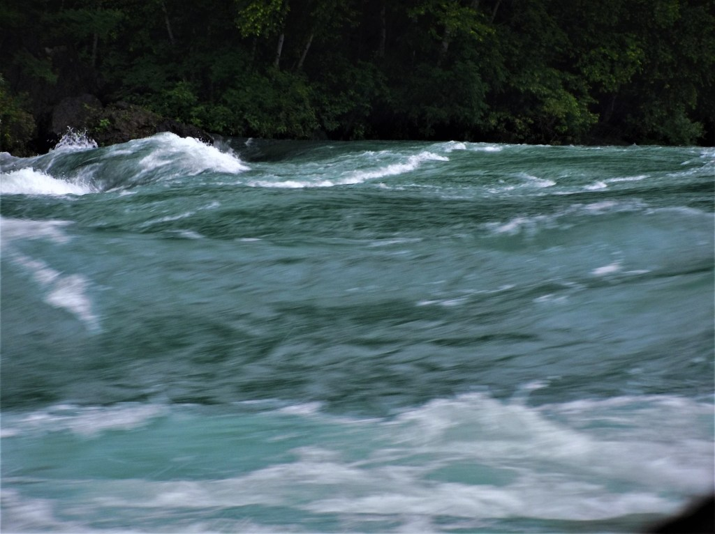 Jet Boat Rapids 1