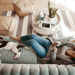 8 Simple Ways to Make Your Home Pet Friendly