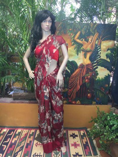 grace-and-elegance-the-chiffon-saree-6