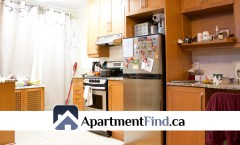 165 Dalhousie Street #4 (Lower Town) - 1450$