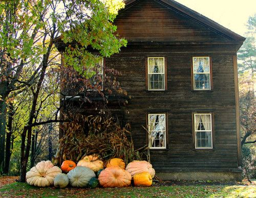 pumpkin house decor