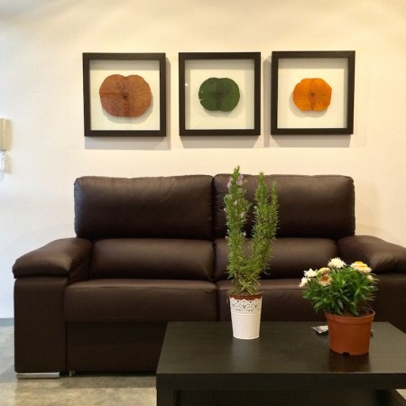 Tourist Apartments For Holidays In Cordoba
