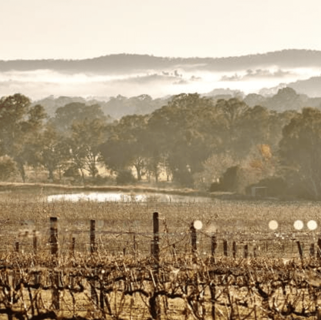 things to see and do in and around wangaratta _ king valley