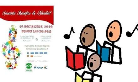 Concierto benéfico en Madrid