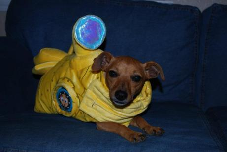 """Halloween My mom dressed me up as """"The Yellow Submarine"""" from The Beetles"""