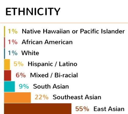 Ethnicity-03
