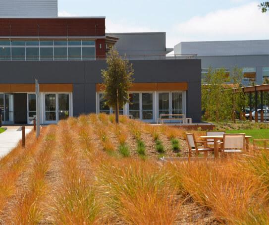vf-courtyard-berm-crop