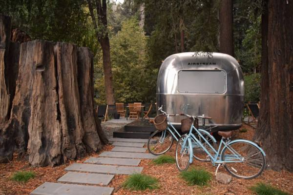 Sized_Autocamp_Airstream-btwn-Redwoods