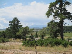 Pike's Peak in the distance