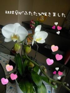 2016-05-20_16.37.31