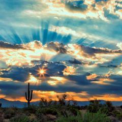 Sneak Peeks: Beautiful  Sunrise Photos