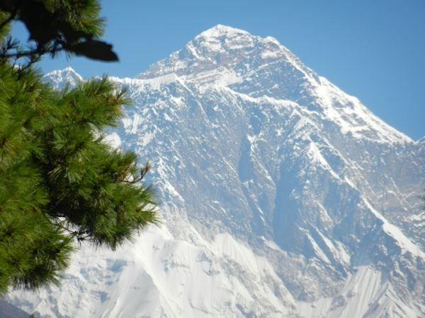 First Glimpse of Everest Through Trees