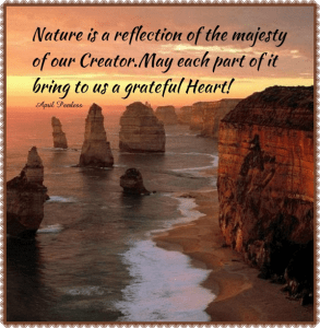 Nature is a reflection of the majesty of our Creator. May each part of it bring to us a grateful heart. ~April Peerless