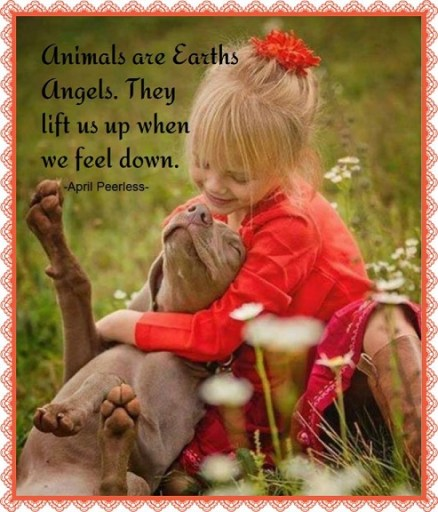 Animals are Earths Angels. They lift us up when we feel down. ~April Peerless