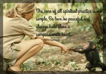 The core of all spiritual practice is simple. Be love,be peaceful and always hold close a compassionate heart. A.Peerless