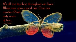 We all are teachers throughout our lives. Make sure your a good one. Love one another. Plant only seeds of love.. ~April Peerless