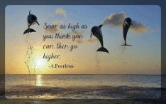 Soar as high as you think you can go, then go higher. April Peerless