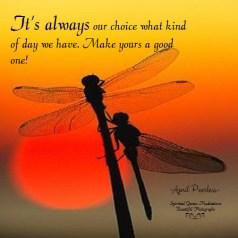 Always our choice