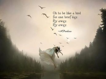 Oh to be like a bird for one brief day. Fly away, fly away.