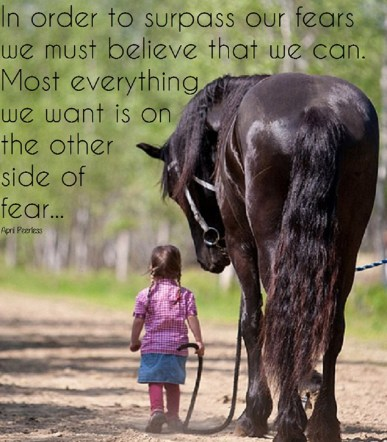 In order to surpass our fears we must first believe that we can. Most everything we want is on the other side of fear.. ~April Peerless