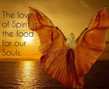 Be guided by the love of Spirit, not by the fears from Ego. Ego brings in fear. Love brings in peace.. The love of Spirit is the food for our Souls. ~April Peerless