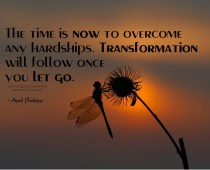 The time is ''now'' to overcome any hardships. Transformation will follow once you let go. Embrace this and carry on! ~April Peerless