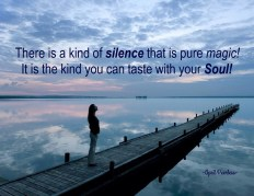 There is a kind of silence that is pure magic! It is the kind you can taste with your Soul! ~A.Peerless