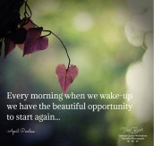 Every morning when we wake-up we have the beautiful opportunity to start again. A.Peerless
