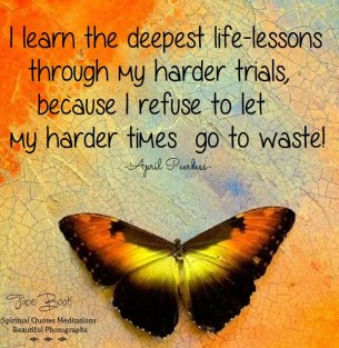 I learn the deepest life-lessons through my harder trials, because I refuse to let my harder times go to waste! April Peerless