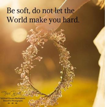 Be soft. Do not let the world make you hard. Do not let pain make you hate. Do not let the bitterness steal your sweetness. Take pride that even though the rest of the world may disagree, you still believe it to be a beautiful place. -Kurt Vonnegut