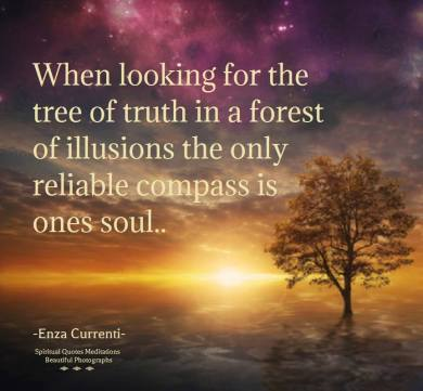 When looking for the tree of truth in a forest of illusions, the only reliable compass is ones soul.. -Enza Currenti