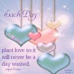Every day should be thought of as a special day, because when it has finished it is a day of our life we will never have again. Each day plant love so it will never be a day wasted. April Peerless